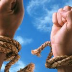 Условно-досрочное освобождение после осуждения по статье 228 УК РФ